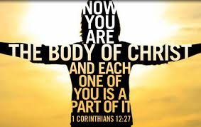 body of christ individuality in religion the church