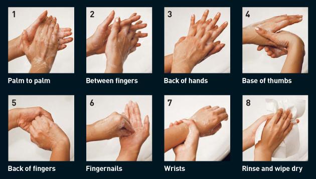 8_steps_hands