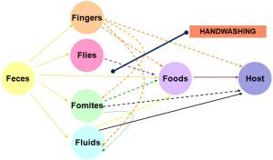 Hand Contamination Map